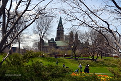 Majors Hill Park (Krissy-Anne ) Tags: canada buildings ottawa parliament majorshillpark