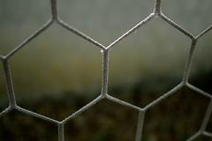 Goal (Idraulica.Pistolesi) Tags: italy sport nikon calcio rete nikond3100 idraulicapistolesi