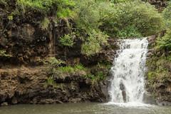 (lkaloti) Tags: geotagged photography hawaii oahu waterfalls northshore honolulu lightroom waimeavalley canon6d