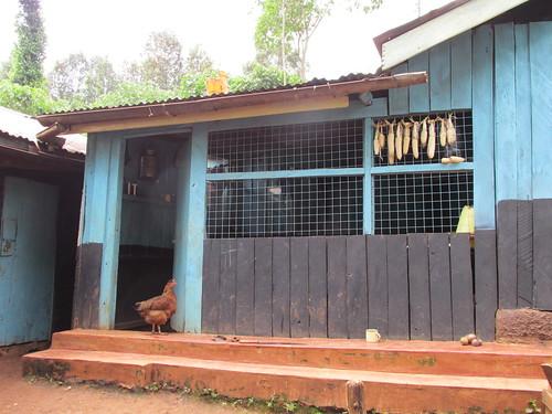 Au village, Kenya