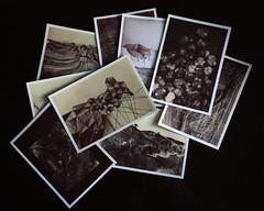 Registros Espaciales - Postales 10 x 15 CM (Mariana de la Torre) Tags: design graphic paisaje desierto dibujo ilustration gráfico ilustración fadu territorio longinotti morfología taquigrafía registrosespaciales