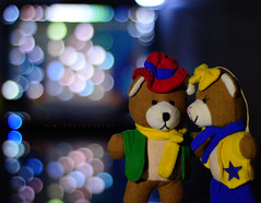 BEARLOVE (windchangesme) Tags: bear christmas love night nikon teddy bokeh proposal d3200