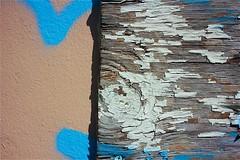 Blue (LarryJay99 ) Tags: wood texture lines canon florida circles patterns westpalmbeach peelingpaint weatheredwood woodgrain canonefs60mmf28macrousm canon60d ilobsteritflickr