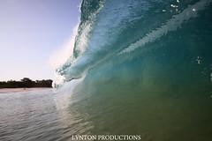 IMG_4389 copy (Aaron Lynton) Tags: beach canon big spl beah makena shorebreak lyntonproductions