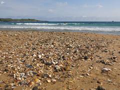 IMG_4389 (49Carmelo) Tags: arena santander conchas playadeelsardinero