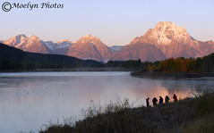 Alpen Glow-Photographers at Oxbow Bend at Sunrise-Grand Tetons National Park-Wyoming (78a) (moelynphotos) Tags: mist sunrise dawn earlymorning wyoming waterbirds alpenglow grandtetonnationalpark oxbowbend moelynphotos
