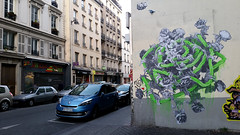 Ludo (Ausmoz) Tags: street urban streetart paris pasteup art nature collage wall poster sticker collages stickers revenge posters walls rue mur murs ludo urbain naturesrevenge