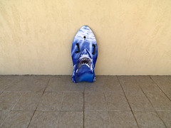 The Only Rhyme That Bites (Crausby) Tags: shark jaws boogieboard surfing spain espana calp calpe costablanca