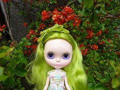 Orange & Green (Bebopgirl1969) Tags: orange flower green factory blythe quince fakie