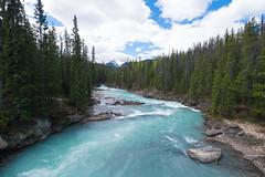 Natural Bridge 03 (tomomega) Tags: naturalbridge canada yohonationalpark    river  rock  bridge