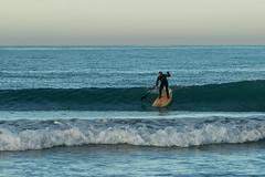 20160618_0096_7D2-200 Stand Up Paddle Surfer (170/366) (johnstewartnz) Tags: newzealand canon eos 70200 newbrighton 70200mm apsc 7d2 unlimitedphotos day170366 7dmarkii canonapsc 366the2016edition 3662016 18jun16