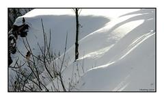 137 Niagara Falls, Ontario 2004 (DBattag) Tags: winter ice waterfalls scenary niagaraonthelake niagarafallsontario