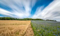 Two Sides (m.cjo Fotografie - Martin Rakelmann) Tags: cloud field clouds long exposure colours time feld wolke wolken rgen farben sellin langzeitbelichtung lzb lte mcjo