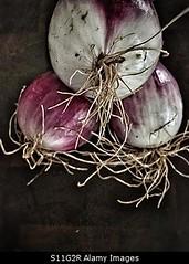 Uploaded to Stockimo (mlovette) Tags: red food up three close farmers market harvest roots vegetable fresh onions onion knob harvested stockimo