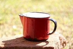 Red Cup (MGuterres) Tags: light red sun cup vermelha xcara