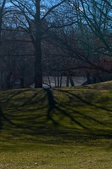 The Days Grow Longer in March (smilla4) Tags: trees shadow house march maine bathmaine