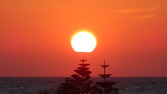 Sunset Island (Crete Greece) 2016 (crush777roxx) Tags: ocean camera trees sunset vacation orange sun holiday june island greek zoom sony horizon greece crete sunsetglow tuesday 9th crush thursday compact oceansunset sunsetocean compactcamera 2016 orangeglow greekisland glowingsun cretegreece islandsunset cretesunset hx90v sonyhx90v 2016sunset crush777roxx 20160609