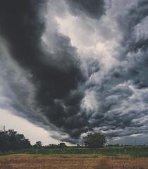 Brainstorming (Costin Stanciu) Tags: street trip bridge cloud storm flower clouds nikon teen filed