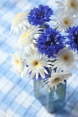 cornflowers and daisies (Crazy House Capers) Tags: flowers daisies posy bluebottle cornflowers vintagebottle flowersandvintage