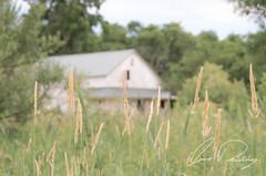 Seclusion (IRick Photography) Tags: seclusion secluded farm farms farmer farming barn barns oldbarn horse horsebarn field fields country countryside backroad rural