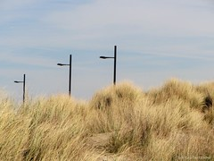 Eye-catchers in black (katrienberckmoes) Tags: sea black lamp coast three belgium dunes row posts eyecatcher westende