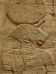 Closeup of the lion-headed goddess Sekhmet on the Shrine of the 25th dynasty pharaoh and Kushite King Taharqa  Egypt 7th century BCE (mharrsch) Tags: architecture temple worship shrine god unitedkingdom religion goddess egypt oxford 7thcenturybce myth deity basrelief ashmoleanmuseum taharqa lateperiod 25thdynasty mharrsch