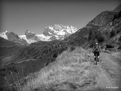 Autumn Riding around Verbier  (80) (Carl and Sian) Tags: orange alps switzerland mtb mountainbiking verbier singletrack orangefive bikeverbier alpinesingletrack carlandsian