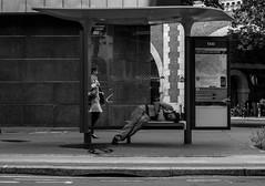 Boulevard Diderot (Nikan Likan) Tags: street white black paris field zeiss vintage lens photography 50mm prime boulevard homeless jena mount mc german carl manual praktica depth | diderot 2016 carlzeissjena prakticar 5 14