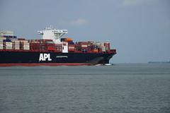 APL Sentosa (DST_0625) (larry_antwerp) Tags: 9632040 aplsentosa container terneuzen netherlands schip ship vessel        schelde