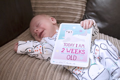 Two Weeks Old (kellyhackney1) Tags: family baby love smile happy myworld mummy chill babycards piccy twoweeksold contented happybaby babylove twoweeks ourbaby happymummy