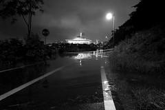 Parlament Flood (Lig Ynnek) Tags: river flood seoul southkorea han dangsan