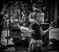 street portrait - pigeon post girl (Daz Smith) Tags: city uk portrait people urban blackandwhite bw playing streets blancoynegro monochrome birds canon pose blackwhite bath candid pigeons young citylife thecity streetphotography posing gril canon6d dazsmith