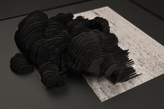 Sleep Spindles I (DPRT / Leonhard Lass) Tags: fluid generative procedural lasercut
