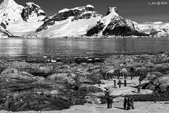 Petermann Island, Antarctica (x_tan) Tags: antarctica petermannisland penolastrait canonef28300mmf3556lisusm wilhelmarchipelago