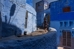 Blue, Jodhpur (Marji Lang) Tags: life city travel blue light people india color colors girl composition photography kid colorful shadows streetphotography documentary blues running run bleu hues moment rajasthan palette inde jodhpur spontaneous decisive deepblue streetshot blueshades bluecity northindia travelphotography bluedream blueworld 2013 indedunord oldjodhpur marjilang