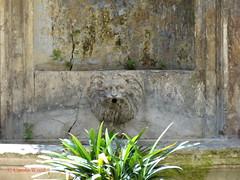 Monserrato 152 (Via) - Palazzo Incoronati 04 (Fontaines de Rome) Tags: rome roma fountain brunnen fuente via font fountains palazzo fontana fontaine rom fuentes bron 152 fontane monserrato fontaines viadimonserrato incoronati palazzoincoronati viadimonserrato152
