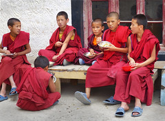P1020762 Young monks enjoying lunch at Thiksey. Ladakh.  PS  (peteshep) Tags: buddhist ps lunchtime monastery himalayas thikse ladakh thiksey novices youngmonks tiksey peteshep copyrightphoto fz200 july2013 langenlat34056535lon77666849z17mbsearchthiksey