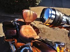 Watch Your Butt (misterbigidea) Tags: landscape eyes seat butt neighborhood hotwheels harleydavidson motorcycle biker parked custom saddle eyeballs harly vrooooom iseefaces facesinplaces neauty uploaded:by=flickrmobile flickriosapp:filter=nofilter