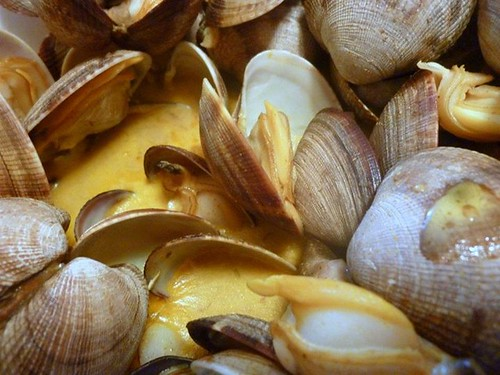 Clams in curry butter sauce