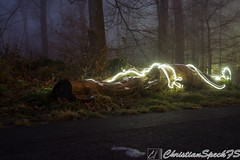 Light tree (christian speck) Tags: trees light lightpainting fog night forest 35mm outdoors schweiz switzerland suisse sony arbres lumiere nuit foret sauvabelin rx1 brouyard
