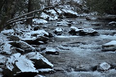 Smoky Mountain Park Stream (Mike Woodfin) Tags: park winter snow cold water canon river photography photo nc cool nikon rocks stream fuji tn picture photograph cherokee gatlinburg smokymountains appalachians highway441 mikewoodfin