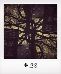 "#DailyPolaroid of 13-2-14 #138 • <a style=""font-size:0.8em;"" href=""http://www.flickr.com/photos/47939785@N05/12597084275/"" target=""_blank"">View on Flickr</a>"