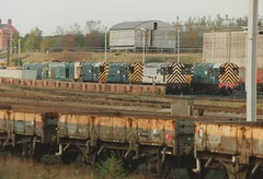 """Springs Branch 'Choppers' & 'Gronks' (37190 """"Dalzell"""") Tags: chopper brian leeds scrap rods ped wigan withdrawn shunter whiteroof gronk unbranded 20073 20087 class31 class08 brblue class20 triplegrey springsbranch 31312 class311 class200 trainloadfreight trainloadcoal 08915 whistlingwardrobe 08676 08894 08815 golye"""