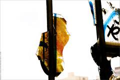 Playground Project - Paris. IMG110413_225__S.D/S.I.P_FR_JPG Compression. (Sbastien Duhamel) Tags: copyright news paris france canon french graffiti europa europe european photographer newmedia eu agency artists canon5d press information fr francia prensa fra artistes fotografo photojournalist pantin informacion photographe presse addictedtoflickr fotoperiodista flickrsbest frenchphotographer fotoreportero photojournaliste graffeurs golddragon graffitiartists ultimateshot flickrdiamond bancodeimagenes flickriver goldstaraward thebestofday rubyphotographer flickrlovers photographefranais mdiapart flickroom playgroundproject canaldelourcq flickrhivemindgroup reporterphoto fotografofrancs footagestock artistesgraffeurs projetplayground banquedimages journalistephoto lebtimentdesdouanesdepantin