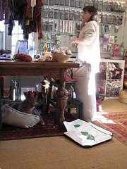 IMG_8495 (SassyKnits) Tags: fanny pitbull basenji brindle adopted mixedbreed jac shelterdog yarnshop jerseyanimalcoalition trilliumyarns