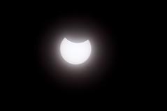 皆既日食 画像12