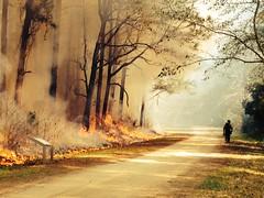 fire southcarolina firefighter usfws