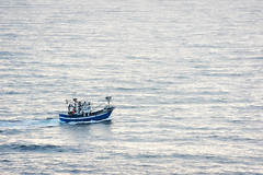 fishing boat in sea (Mimadeo) Tags: ocean blue sea fish seascape water boat fishing solitude alone sailing ship peaceful vessel scene calm trail lonely copyspace solitary tranquil trawler navigating fishingvessel fishingship