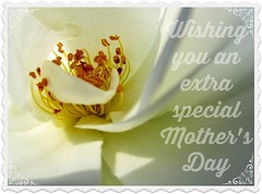 Happy Mother's Day (Cathlon) Tags: rose card wishes mothersday