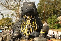 La statut de Nandi (Citananda) Tags: hill mysore inde chamundi